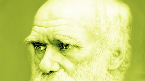 Darwins Orang-Utan