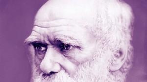 Darwins Mathematik