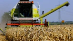 Bayern veröffentlicht Agrarhilfen jetzt doch