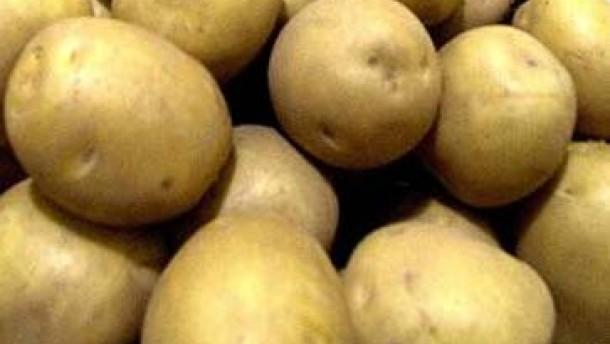 Impfschnipsel aus Kartoffeln