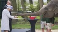 Queen Elizabeth zu Besuch im Zoo