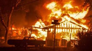 Hunderte Häuser nach Flammeninferno zerstört
