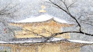 Yasunari Kawabata: Schönheit und Trauer