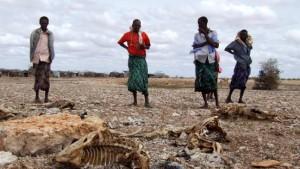 Afrika will 67 Milliarden Dollar für Klimaschäden