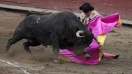 Torero-Schüler kämpfen um Platz in Spaniens Arenen