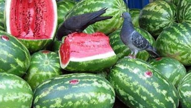 Früchteparadies an der Decke