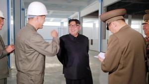 Produziert Nordkorea wieder Plutonium?