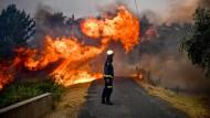 Waldbrände bedrohen Dörfer in Portugal