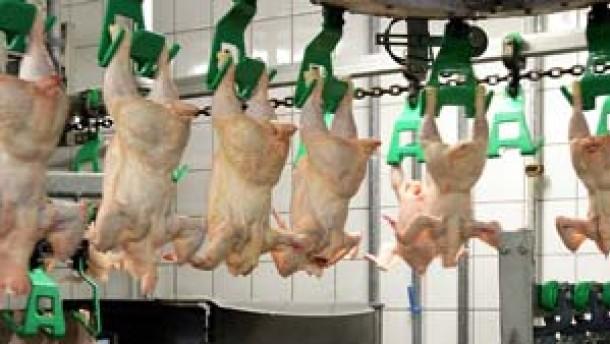 Nach Geflügel kräht kein Hahn mehr