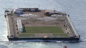Jungfische vor Fukushima mit Cäsium belastet