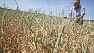Bauern bewässern selbst Getreidefelder