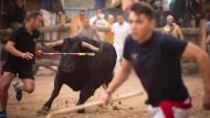 Lanzenverbot bei Stierhatz in Spanien