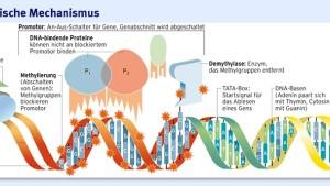 DNA ist nicht alles