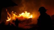 Waldbrände in Chile wüten weiter