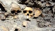 Archäologen finden rituelles Holzgestell für Schädel