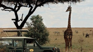 Es war einmal in Afrika