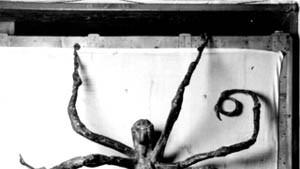 Wenn Tod und Sex eins sind - die Bildhauerin Louise Bourgeois