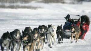 1800 Kilometer Eis und Einsamkeit