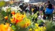 Vom Rentnerhobby zum hippen Großstadttrend