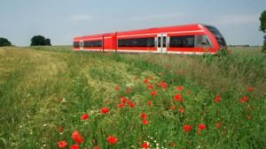 Bahn will Preise im Nahverkehr erhöhen