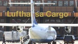 Lufthansa Cargo wartet mit Investitionen in Frankfurt ab