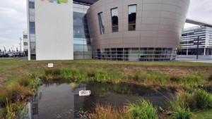 Elektronik-Konzern NXP streicht tausende Jobs