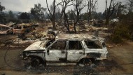 Waldbrände zerstören hunderte Häuser