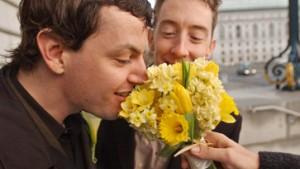 Verfassungsrichter erlauben Homo-Ehe