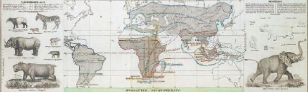 """Verteilung der Dickhäuter: Karte aus dem """"Physikalischem Atlas"""""""