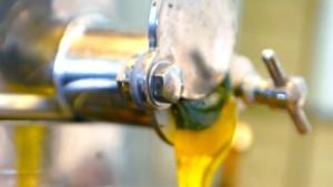 Verkaufsstopp für Honig mit Genmais-Spuren