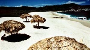 Sieben mexikanische Strände hochgradig verseucht