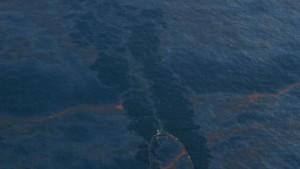 Nationale Katastrophe am Golf von Mexiko