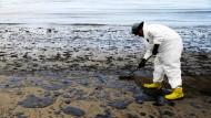 Öl verschmutzt erneut kalifornische Strände