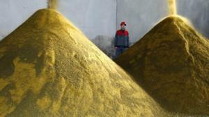 Mehr Biosprit in den Tank