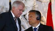 Orbán hat Unterstützung und nicht Kritik verdient