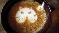 """Dieser """"Cat'achino"""" soll Katzenfreunde glücklich machen, die nebenbei beim Katzen-Streicheln ihren Stress abbauen können. Bestellen kann man ihn im New Yorker Cat Café, das von Donnerstag an für vier Tage geöffnet ist. Eine amerikanische Tierschutzorganisation hat das Projekt zusammen mit einem Katzenfutter-Hersteller auf die Beine gestellt."""