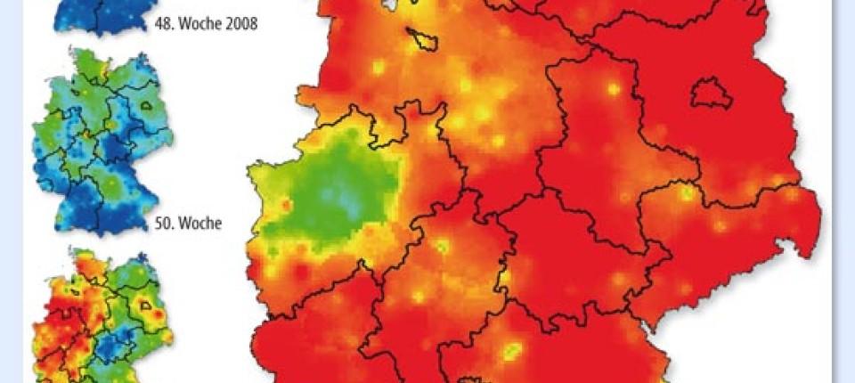 grippe 2020 karte