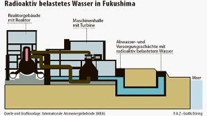 Fukushimas Küste wird massiv kontaminiert