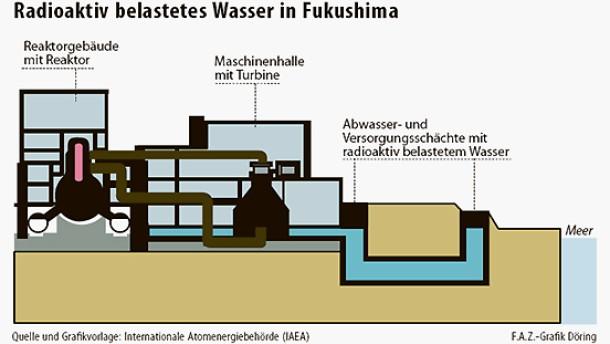 Infografik / Radioaktiv belastetes Wasser in Fukushima